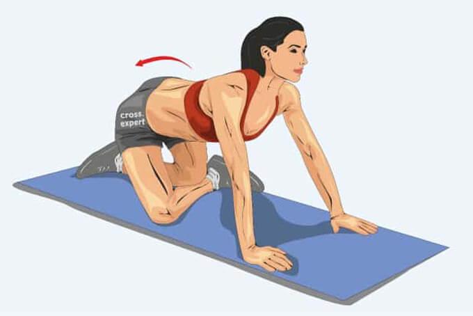 Растяжка ягодичных мышц на четвереньках