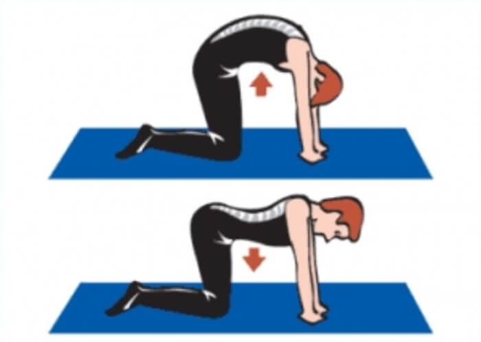 упражнения на выпрямление позвоночника