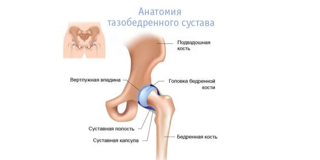 От растяжки болят тазобедренные суставы thumbnail