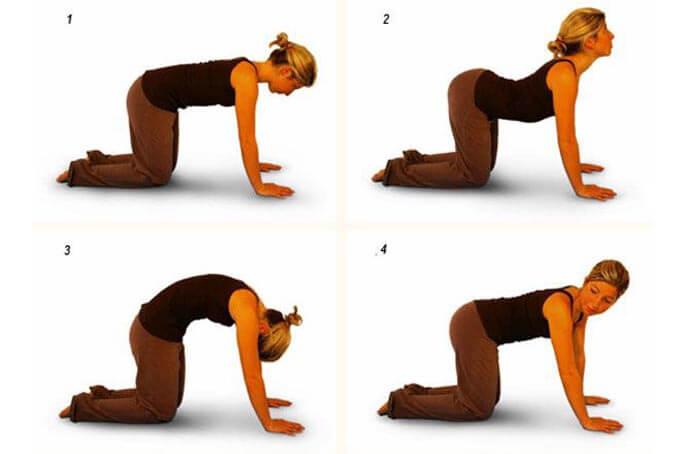 Упражнение кошка - верблюд