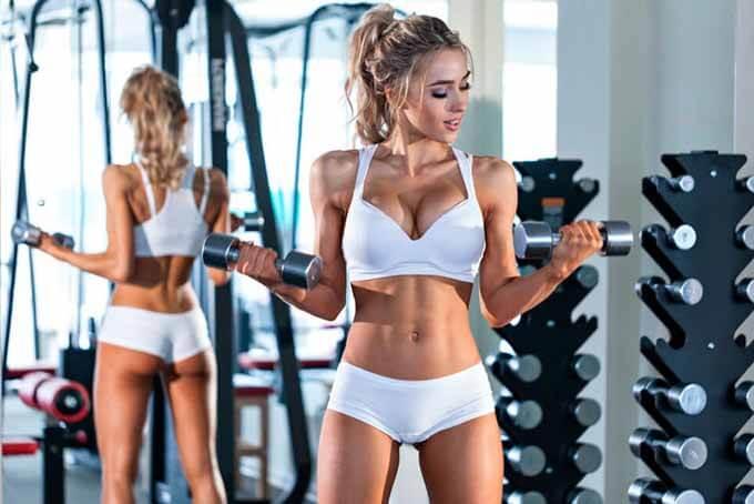 Как строятся мышцы